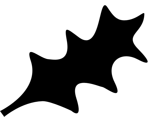 hollyshape